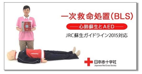 親子で楽しむ日本赤十字社の救命講習